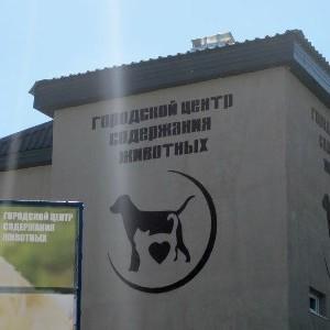 Збільшення електричної потужності КП «Центр поводження з тваринами»